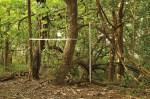 AoLeo;Obrigado Srº. Mondrian (2012), fotografia e desenho s/ paisagem, 75 x 110 cm.