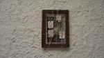 MARCELA THOMÉ Arvore Genealogica, fot, esparadrapo e tinta óleo, 22 x 16cm, 2014