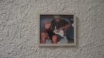 MARCIO FONSECA,  Como explicar a obra de Nelson Leirner para uma lebre viva; fotografia; 22 x 26cm; 2005; Coleção Nelson Leirner R$ 39.650,00