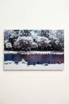 FREDERICO EVARISTO A Luz que Não Vemos 3, fotografia infravermelha, impressão sobre papel fine arte (Hahnemuhle), 40 X 60, 2013, R$600,00