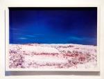FREDERICO  EVARISTO, fotografia infravermelha, impessão s/ papel fine  arte(Hannemuhle), 40 x 60 cm, 2015, R$800,00